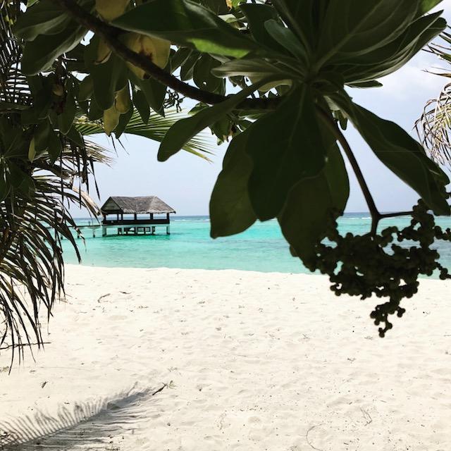 maldive14